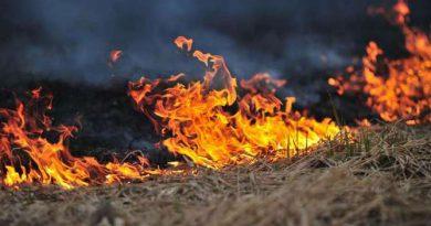 Dva požara otvorenog prostora