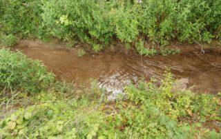 Izvlačenje utopljenika iz naplavnog potoka